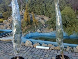топиар дельфин, фигуры для сада
