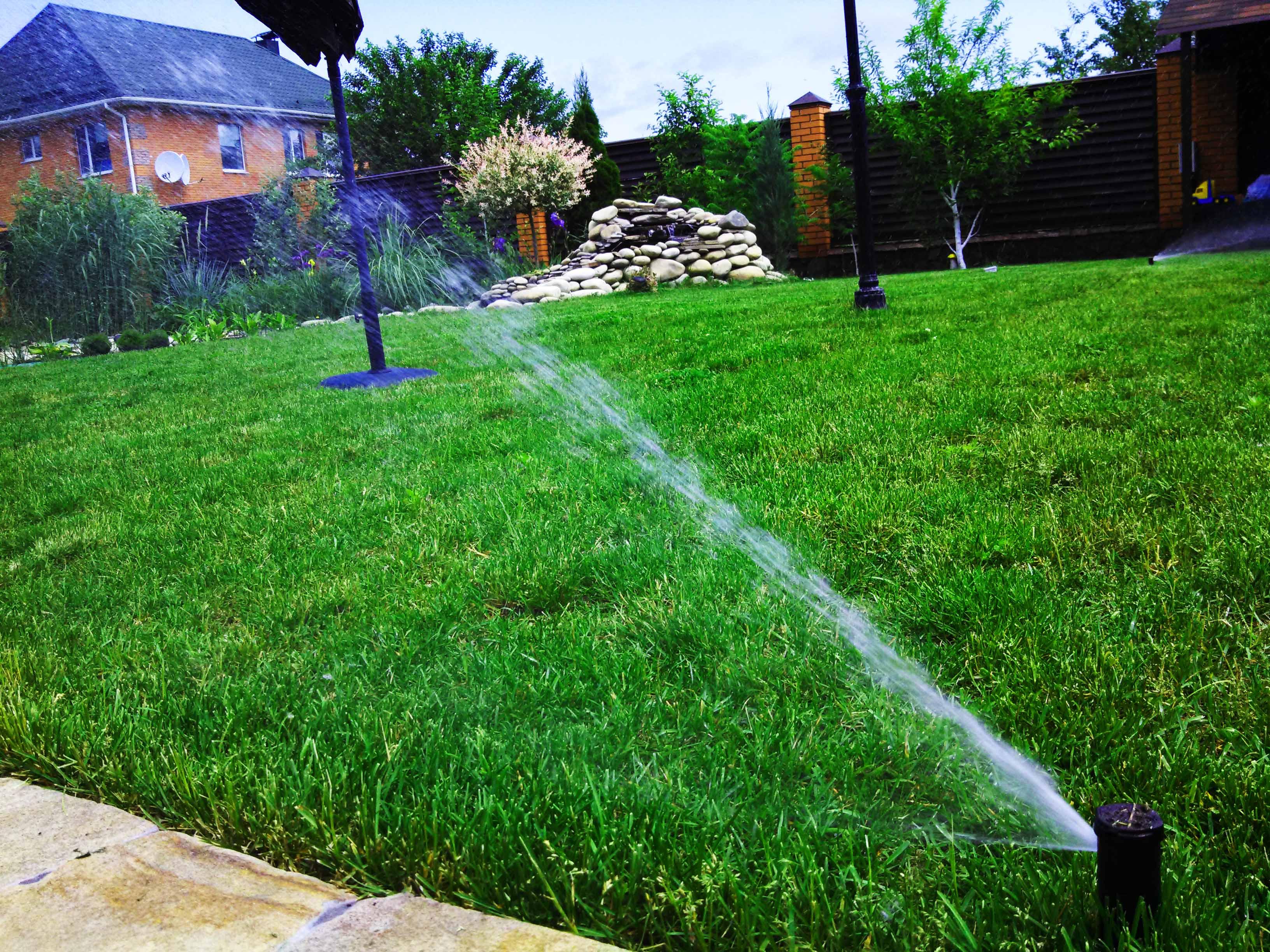 Можно ли поливать газон в жару днем
